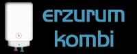 Erzurum Kombi Servisi